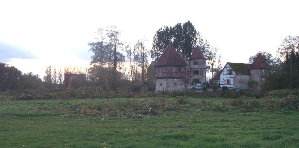 Die Pappeln an der der Südostseite wurden im Winter 2006/2007 gefällt.