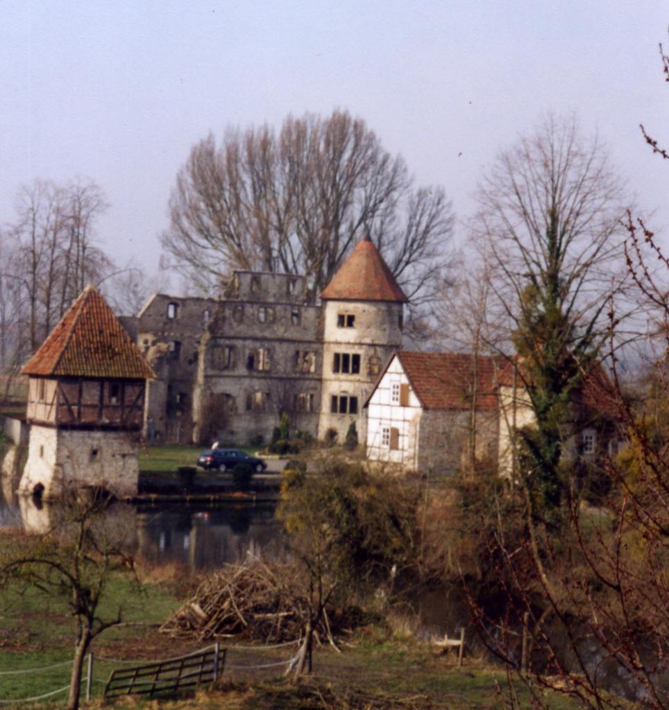 Blick aus östlicher Richtung auf die gefällten Pappeln (Früjahr 2007).